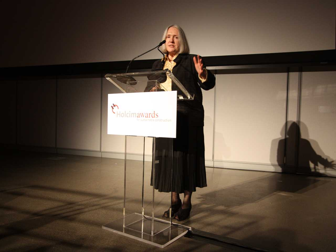 "Global Holcim Awards ""Innovation"" prize 2009: Saskia Sassen, Robert S. Lynd Professor of …"