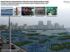 "Holcim Awards ""Next Generation"" 1st prize 2011 North America: Reinforced mangrove protective …"