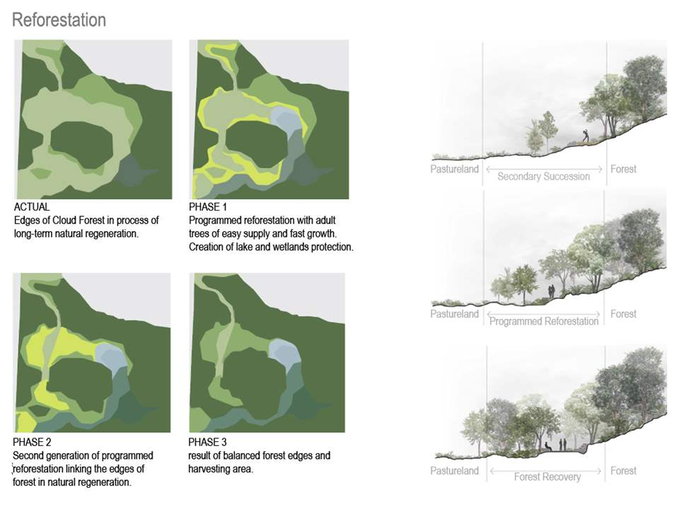 Project entry 2011 - Ecological awareness and recreation reserve, Banderilla, Mexico: Reforestation.