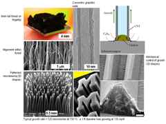 Construction in vivo - Microstructure research for building skins