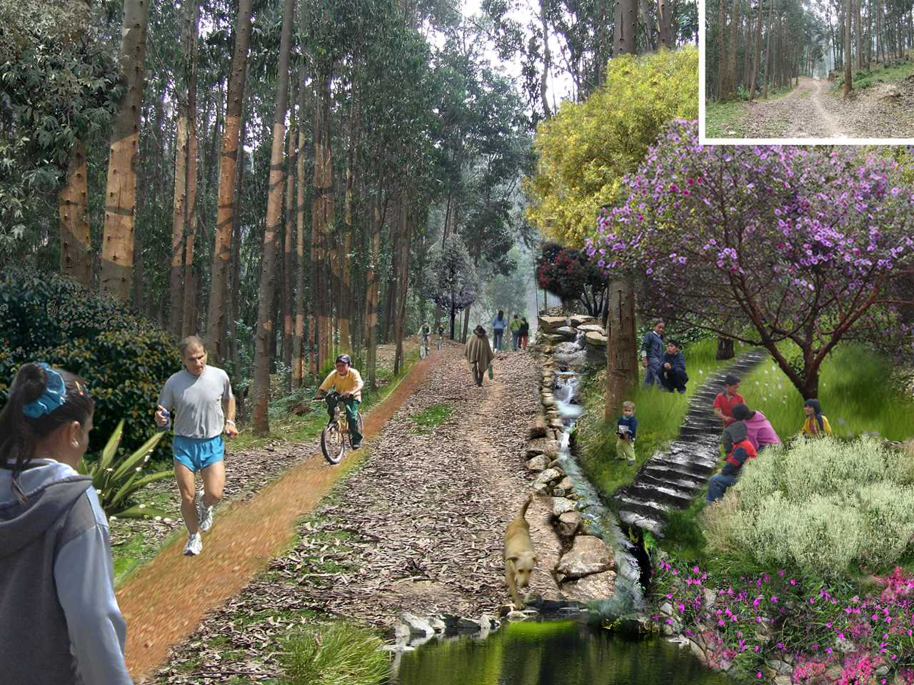 Holcim Awards Acknowledgement prize 2008 Latin America: Mountain trail for land …