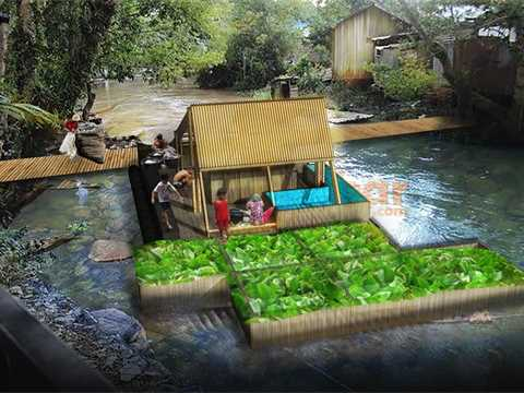 Hyacinth is controlled in the box. The people the facility to do their daily life in the river.