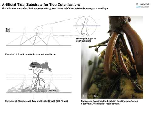 Project entry 2011 - Reinforced mangrove protective infrastructure, Miami, FL, USA: …