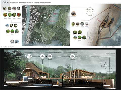 Ecological trail design in the mangrove forests, and a section perspective of crab embryo shelter.